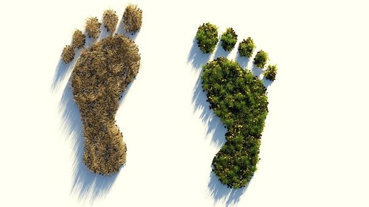 earth feet2