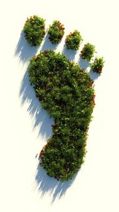 earth foot